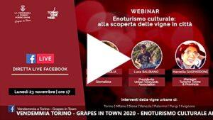 """Webinar sull'enoturismo culturale """"Vendemmia a Torino - Grapes in Town"""" - Intervento di Renzo De Antonia"""