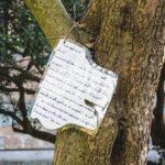 Letterine agli alberi - S.Servolo 04/11/2020