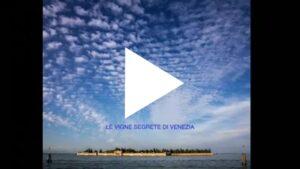 Vigne segrete di Venezia - di Renato Calò